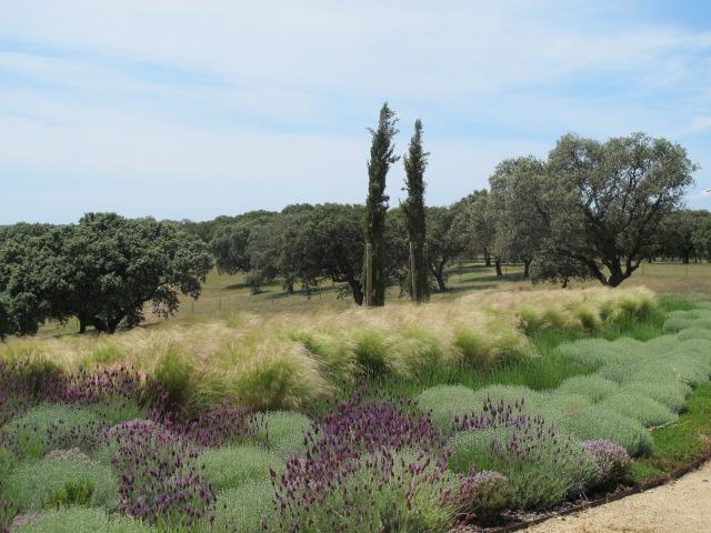jardines-de-campo-navalcan15