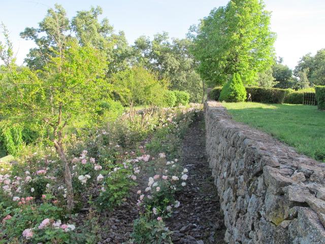 jardines-de-campo-tietar14