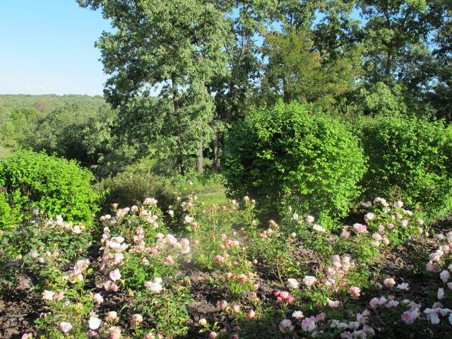 jardines-de-campo-tietar15