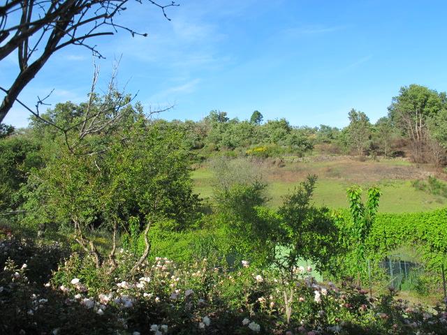 jardines-de-campo-tietar16
