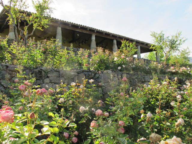 jardines-de-campo-tietar4