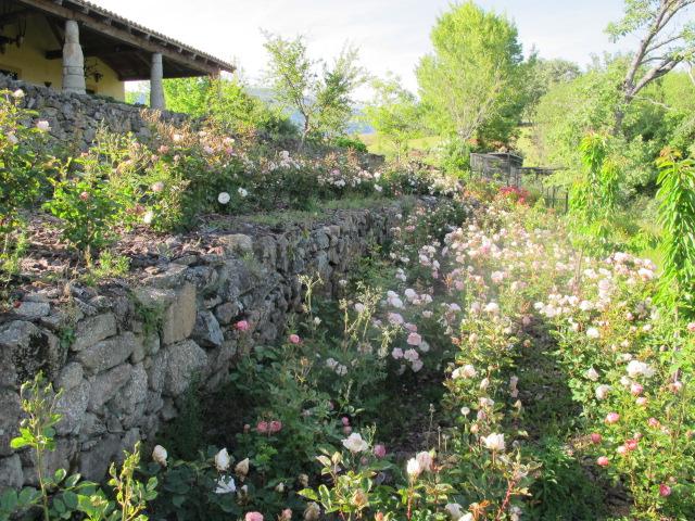 jardines-de-campo-tietar9