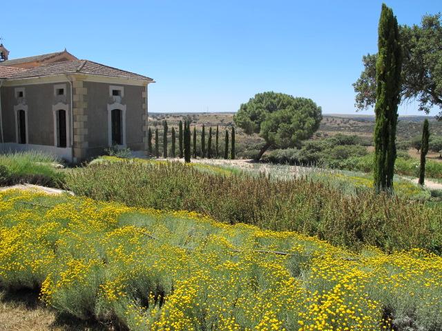 jardines-de-campo-trujillo2
