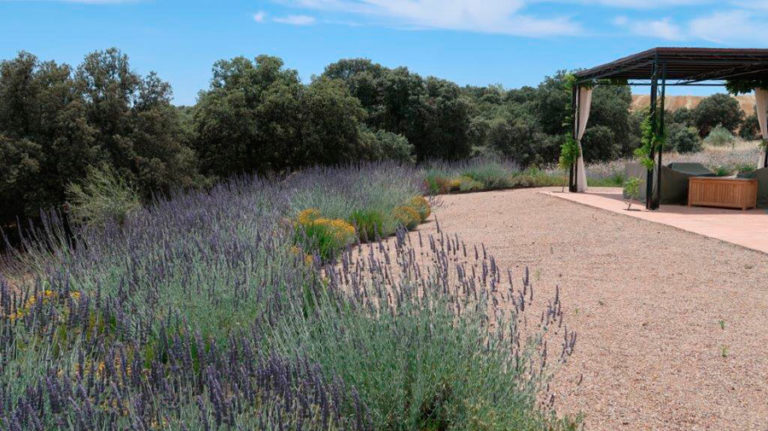 jardinesdecampo-fase1-Alcaudete de la Jara12