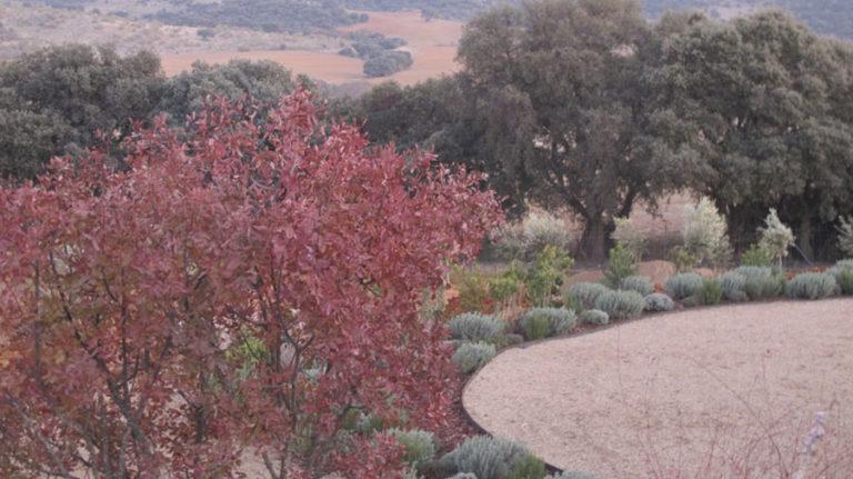 jardinesdecampo-fase1-Alcaudete-de-la-Jara3