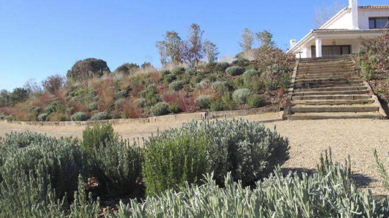jardinesdecampo-fase1-Alcaudete-de-la-Jara4