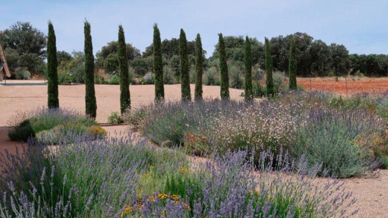 jardinesdecampo-fase1-Alcaudete de la Jara9