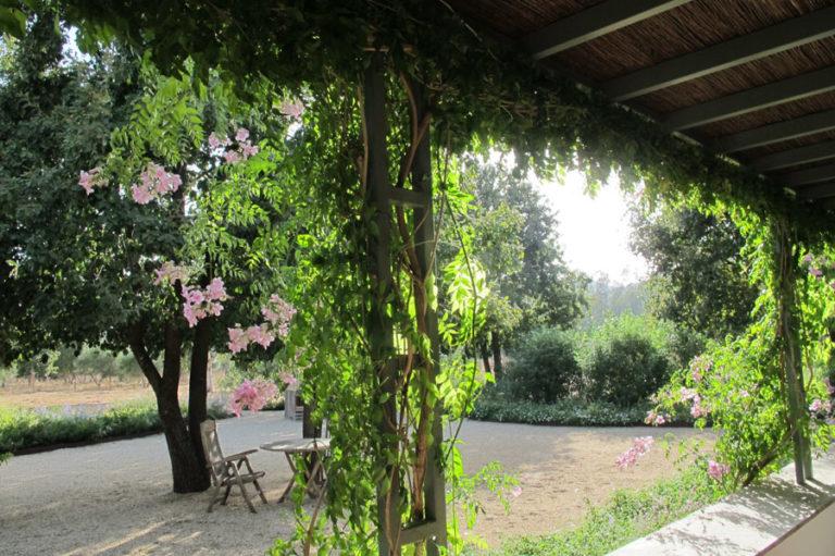 jardinesdecampo-fase1-cadiz10