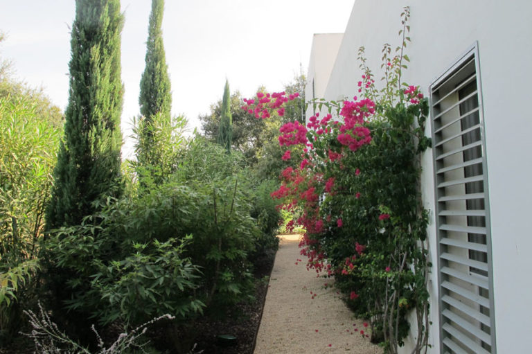 jardinesdecampo-fase1-cadiz6