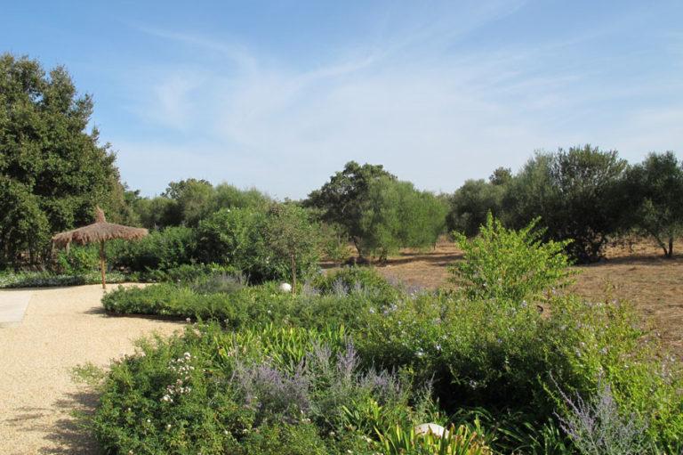jardinesdecampo-fase1-cadiz9