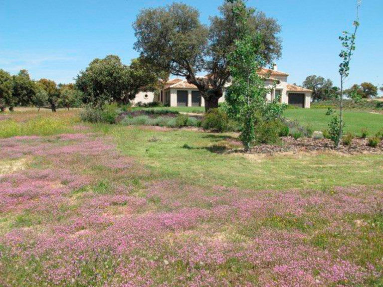 jardinesdecampo-fase1-oropesa10