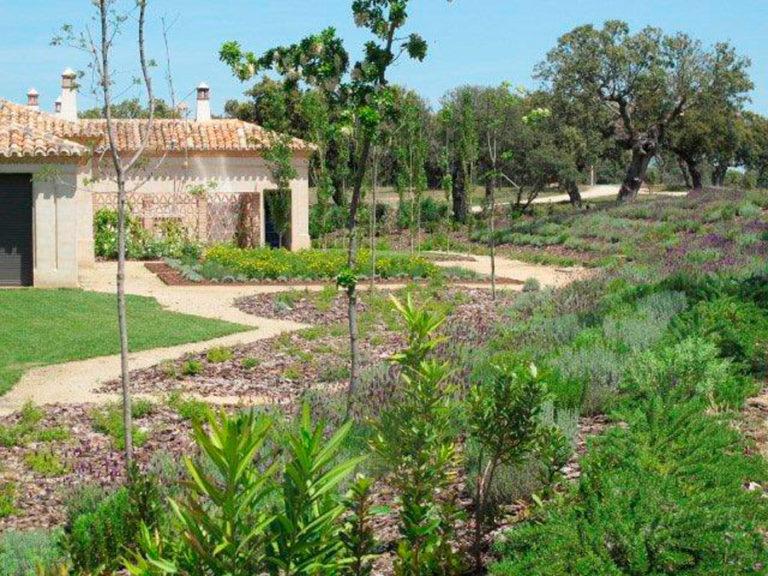 jardinesdecampo-fase1-oropesa12