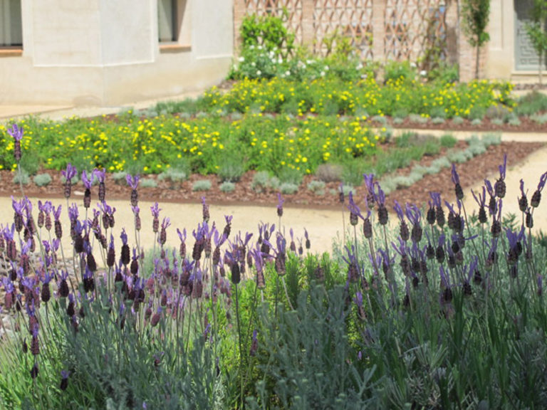 jardinesdecampo-fase1-oropesa14