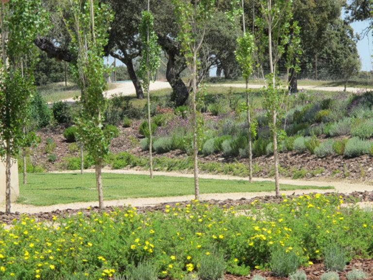 jardinesdecampo-fase1-oropesa21