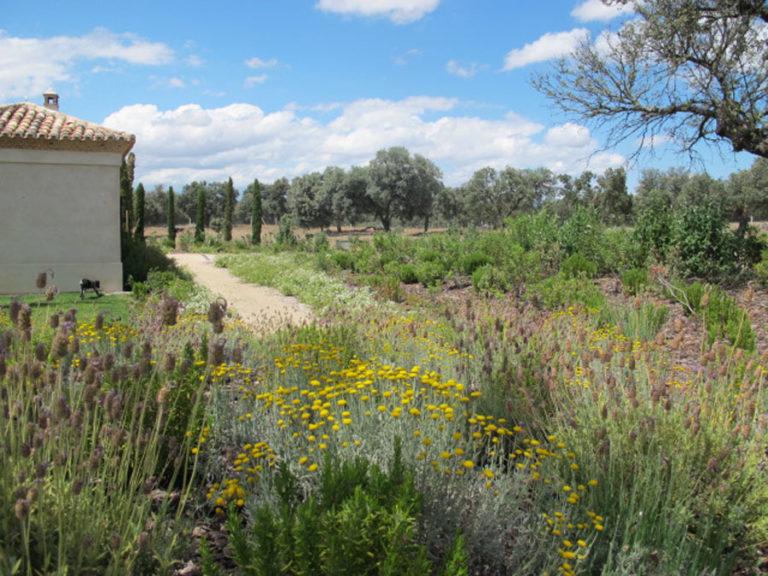 jardinesdecampo-fase1-oropesa23