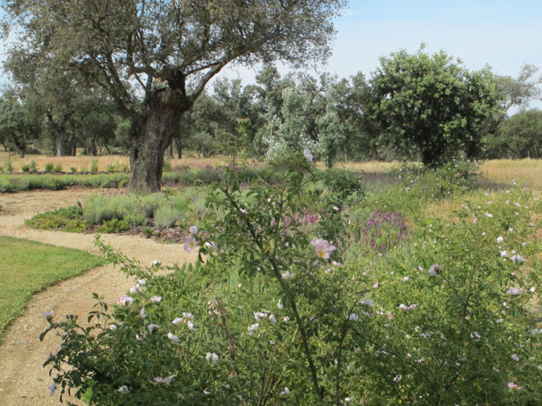 jardinesdecampo-fase1-oropesa5