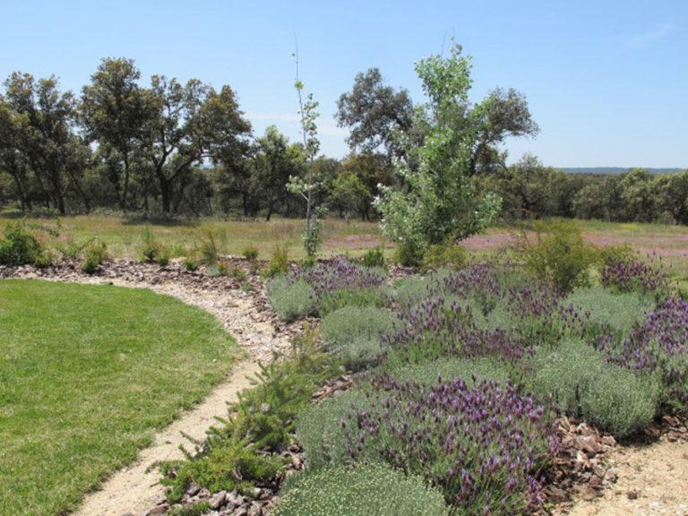 jardinesdecampo-fase1-oropesa7