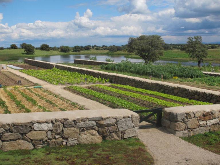 jardinesdecampo-fase1-toledo11