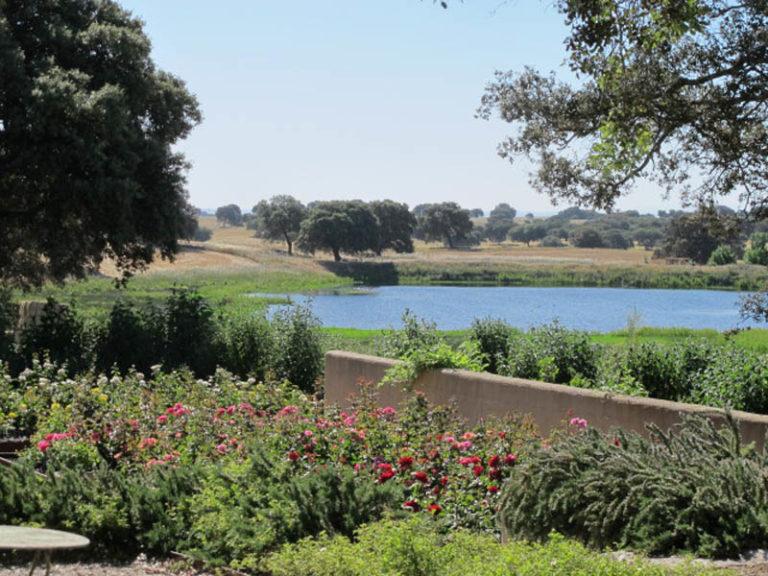 jardinesdecampo-fase1-toledo110