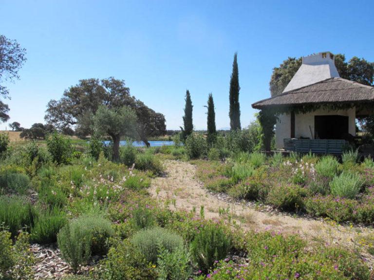 jardinesdecampo-fase1-toledo1122