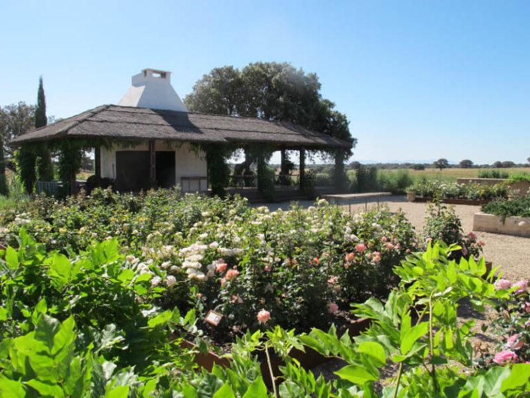 jardinesdecampo-fase1-toledo1123