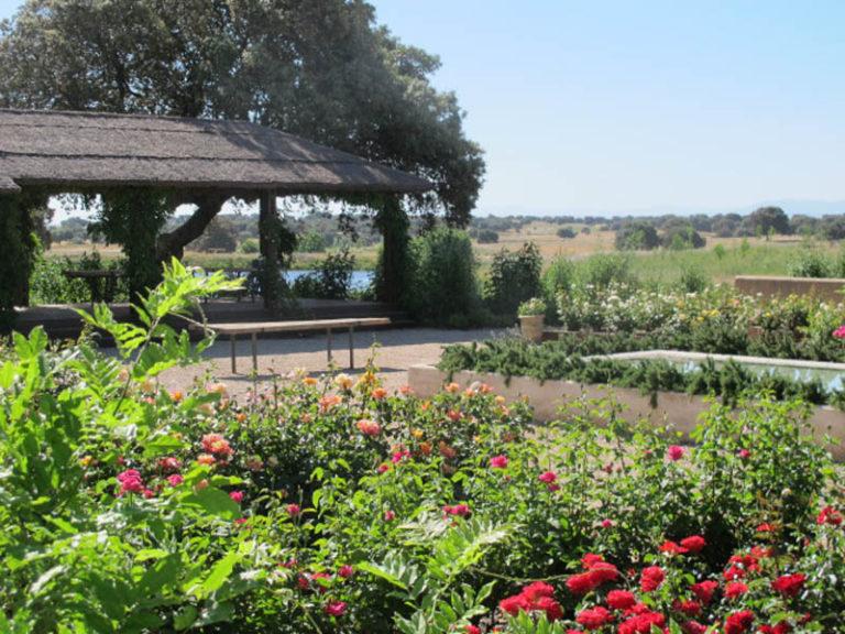 jardinesdecampo-fase1-toledo1126