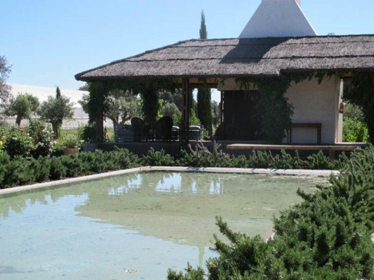 jardinesdecampo-fase1-toledo1127