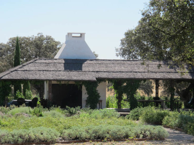 jardinesdecampo-fase1-toledo1130