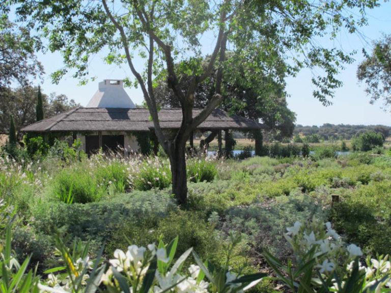 jardinesdecampo-fase1-toledo1131