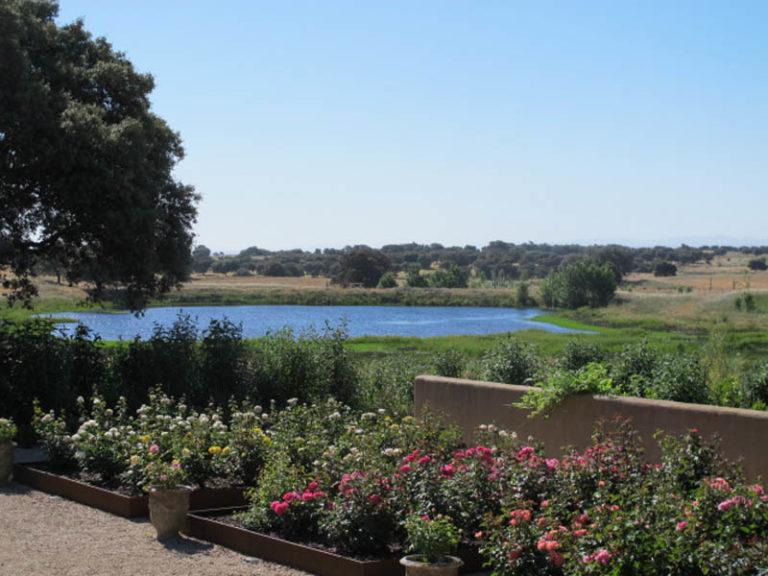 jardinesdecampo-fase1-toledo114