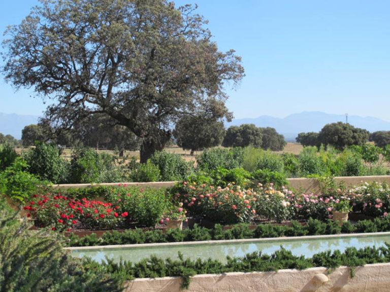 jardinesdecampo-fase1-toledo115
