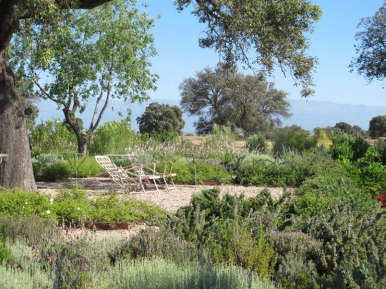 jardinesdecampo-fase1-toledo116
