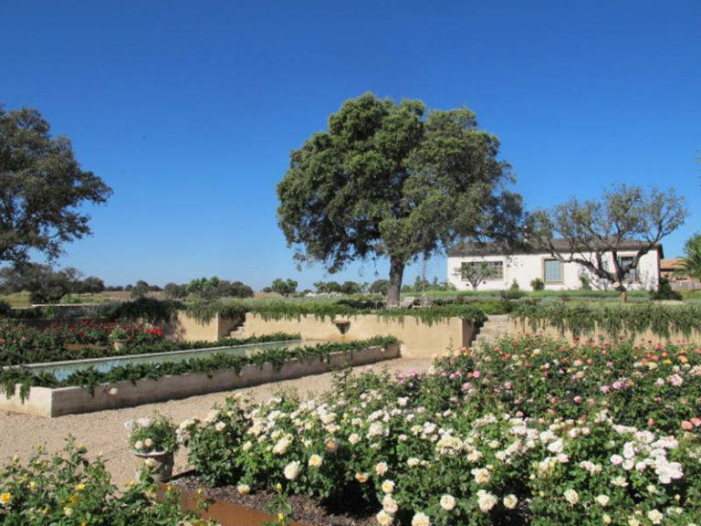 jardinesdecampo-fase1-toledo119