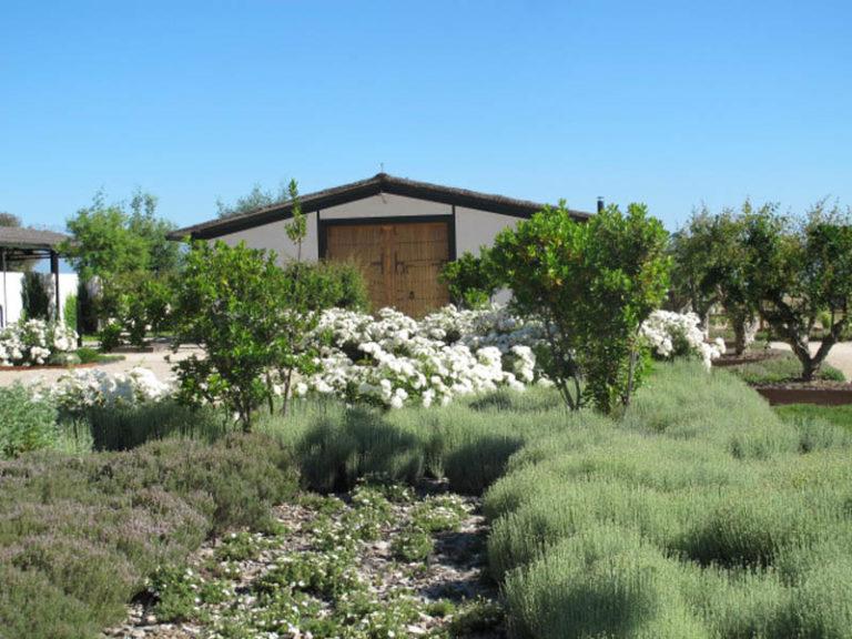 jardinesdecampo-fase1-toledo14