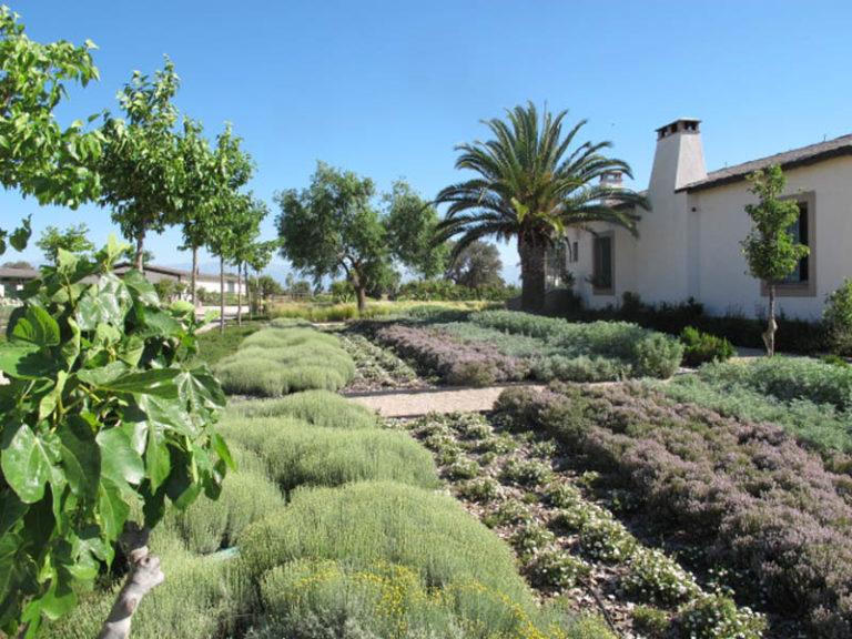 jardinesdecampo-fase1-toledo15