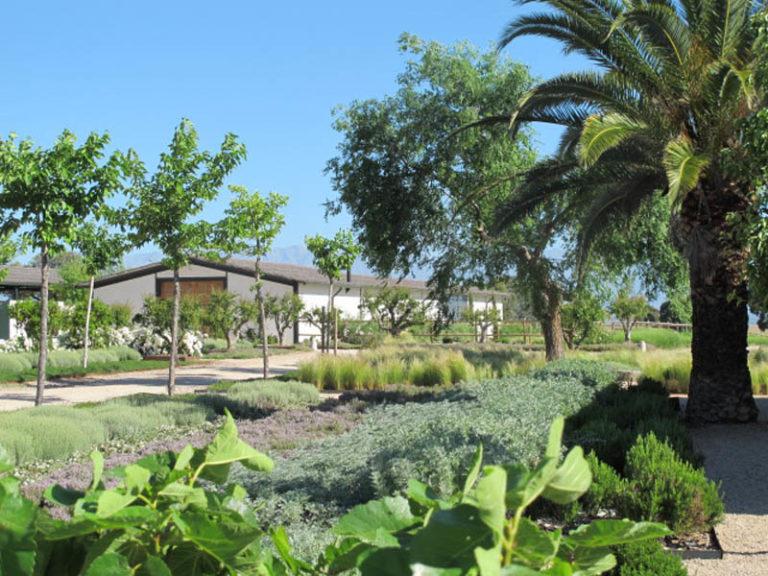 jardinesdecampo-fase1-toledo17